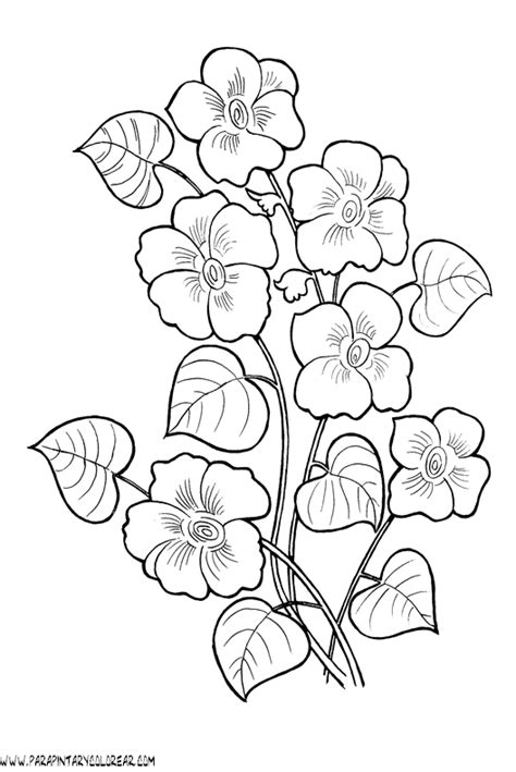 imagenes para pintar rosas gta five coloring pages coloring pages