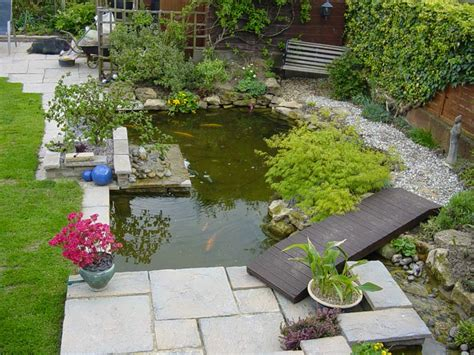 a personal guide to building and maintaining a garden pond