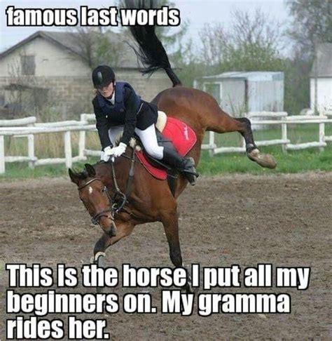 Horse Riding Meme - best 25 funny horse memes ideas on pinterest funny