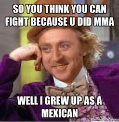 Meme Fight - so you think you can fight because u did mma
