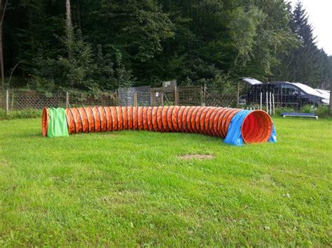 agility tunnel agility hundesport spa 223 und sportliche aktivit 228 t im vordergrund hundesport
