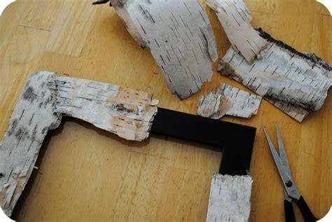Birch Tree Paper For Crafts - best 25 birch bark ideas on birch bark crafts