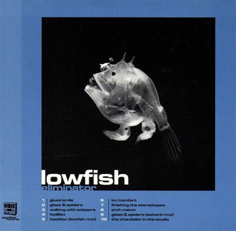 comfort im im comfort lowfish