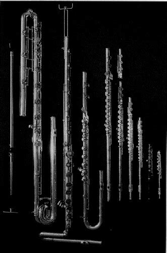 Sub-contrabass flute | Flickr - Photo Sharing!
