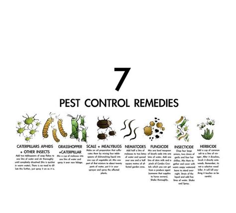 backyard pest control commumunicatecreative permaculture made graphic