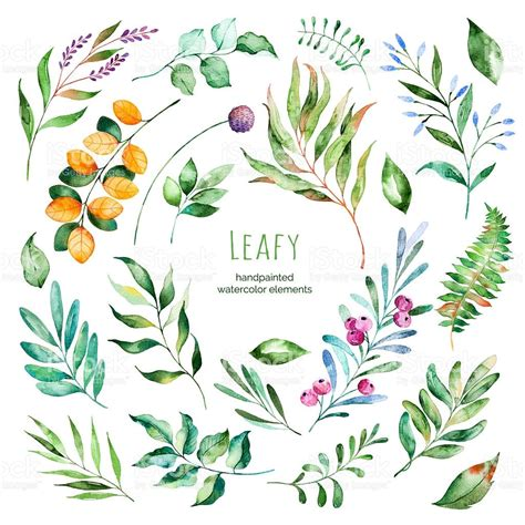 leafy collection handpainted watercolor floral elements