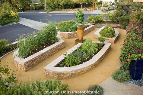 Rock Vegetable Garden Raised Bed Vegetable Beds In California Front Yard Garden Lawn Substitute Gardening