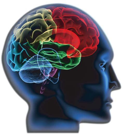 Brainwave Aktivasi Otak Terapi Gelombang Otak otak kiri terapi kecerdasan