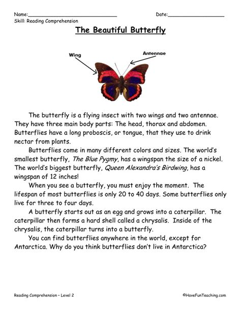 2nd Grade Reading Comprehension Worksheets by Reading Comprehension Worksheet The Beautiful Butterfly