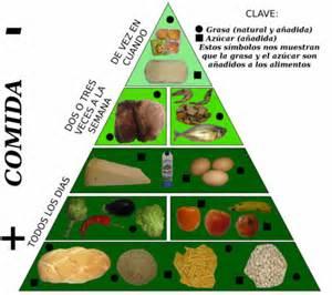 cadena alimenticia pirámide trofica 191 por qu 233 es beneficioso incluir pan en nuestra dieta