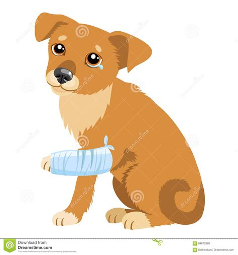 with puppies story sad story vector illustration of sad or puppy sick with splinting