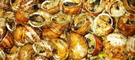 come cucinare le lumache in umido lumache alla calabrese piatti tipici calabresi