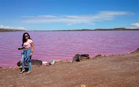 pink lake australia pretty pink lakes in western australia perth