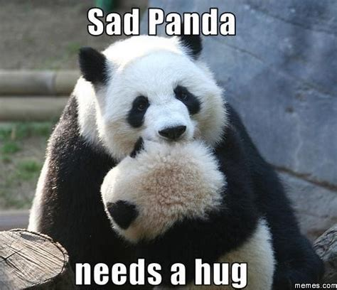 Sad Panda Meme - sad panda babycenter