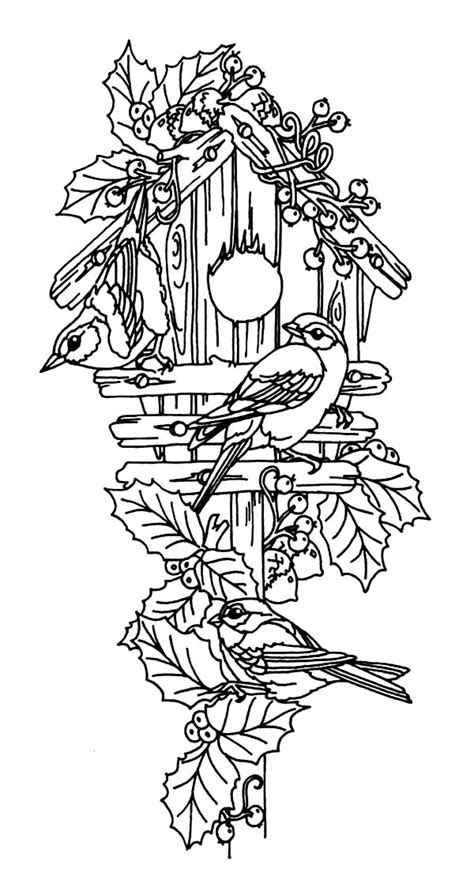 free coloring pages bird houses bird couple guarding their bird house coloring pages bird