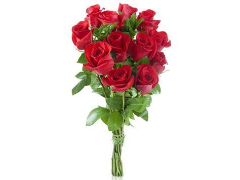 imagenes de rosas rojas frescas pin ramo rosas rojas frescas bouquet media docena pictures