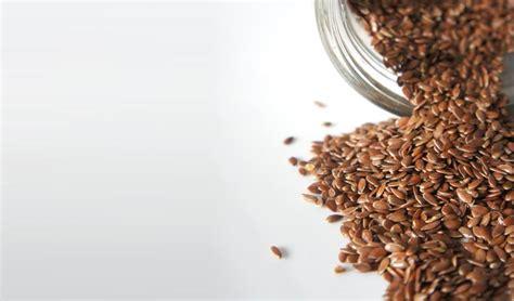 semi di lino utilizzo in cucina semi di lino ecco come usarli in cucina e in cosmetica