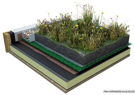 green roof green roof drawing images