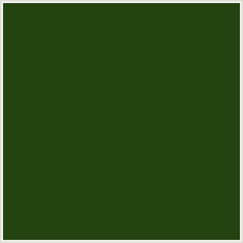 green colors 234311 hex color rgb 35 67 17 green palm leaf