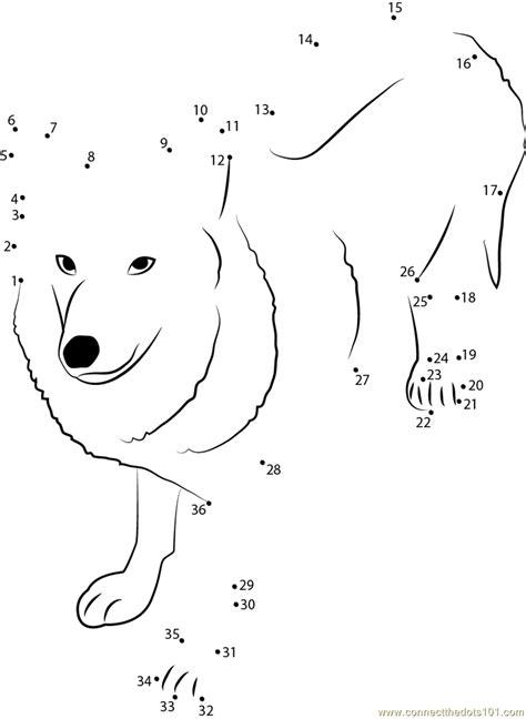 Himalayan Wolf dot to dot printable worksheet - Connect