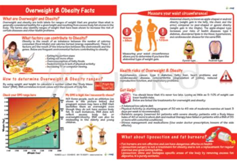 weight management handouts obesity and bmi handout obesity overweight in