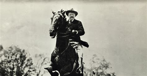 that famous photo of teddy roosevelt riding a moose is fake us president theodore roosevelt riding horse theodore