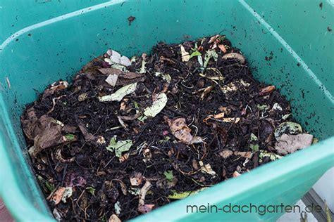 Ameisen Auf Dem Balkon 4795 by Kompost Auf Dem Balkon Iii Mein Dachgarten