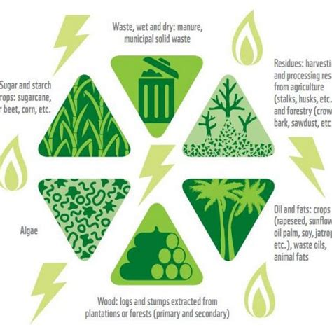 What Is Negative Energy bioenergy traditional amp future uses cleantick