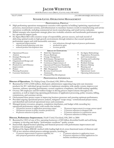 Senior Level Resume Templates by 24 Best Sle Executive Resume Templates Wisestep