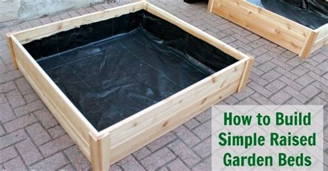 How To Build A Vegetable Garden Bed How To Build Raised Garden Bed Boxes Growing Vegetables