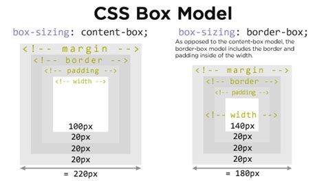 html css width in percentage and borders stack overflow