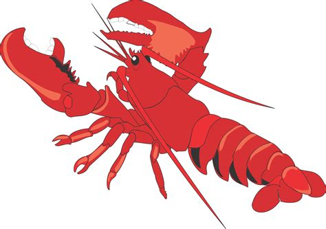 lobster clip lobster clipart clipart panda free clipart images