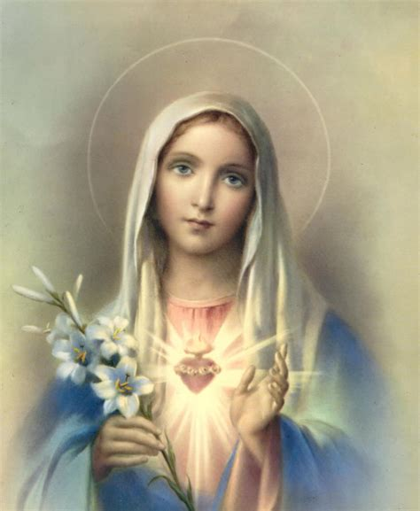 immaculate heart of mary catholic cuisine recipes for august month dedicated to