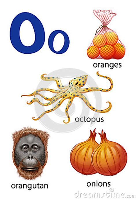 imagenes que empiecen con la letra o en ingles cosas que comienzan con la letra o ilustraci 243 n del vector