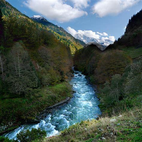 anatolian shepherd puppies craigslist labrador pyrenees great pyrenees vs