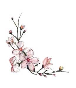 cherry blossom drawing best images collections hd for