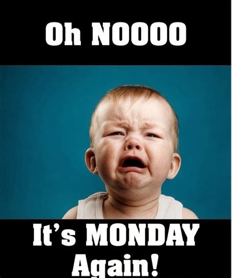 Its Monday Tomorrow Meme - oh no its monday again the funny things in life pinterest
