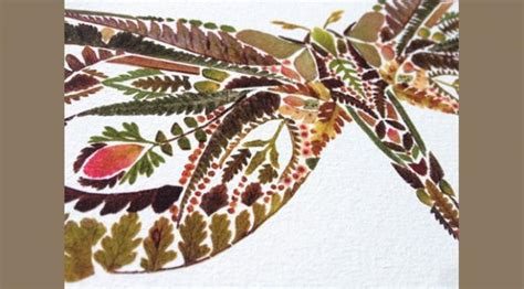 membuat kolase dari daun kering kolase cantik dari kumpulan daun pakis warna warni