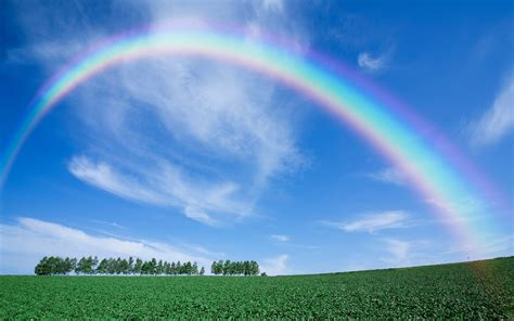 Rainbow Of rainbow wallpapers pictures images