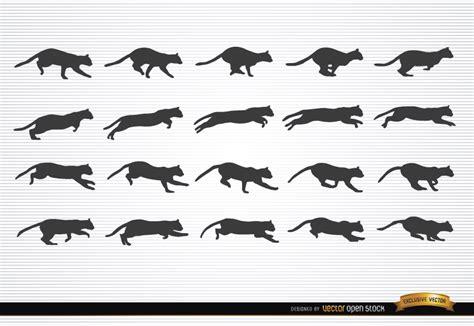 secuencia de imagenes en movimiento amor animales gato en siluetas en movimiento descargar vector
