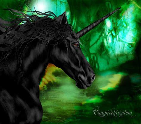 black unicorn hd wallpaper 49 best black unicorns images on pinterest black unicorn