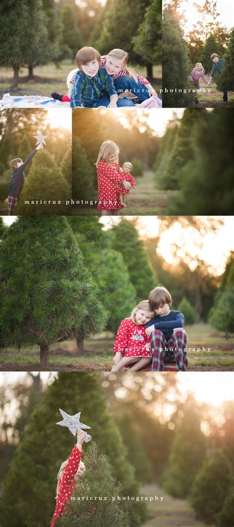 tree farm houston tx photographer 187 houston katy cypress