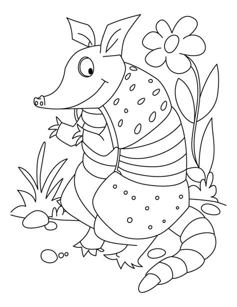 Armadillo Coloring Page Printable Coloring Pages Armadillo Coloring Page