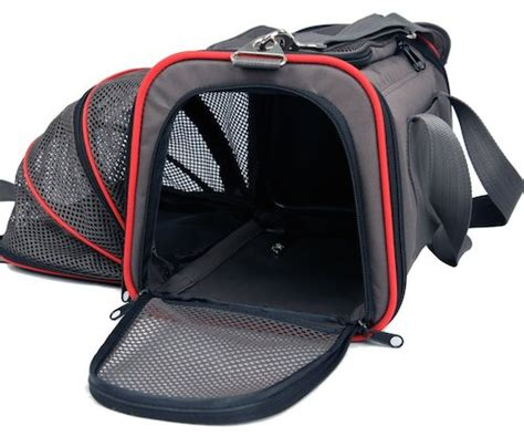 Pet Carriers Airline Approved In Cabin 8 best airline approved pet carriers for in cabin flights
