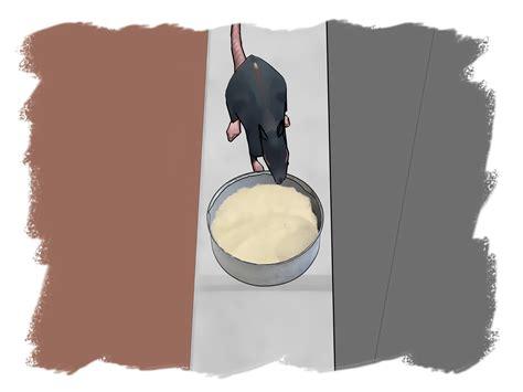 veleno per topi fatto in casa 3 modi per fare veleno per topi wikihow