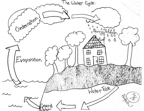 images  water cycle worksheets words worksheets