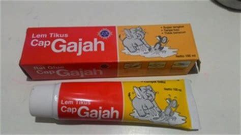 Lem Tikus 100 Ml jual lem tikus cap gajah chika chika