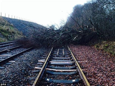 trees lining  rail network   chopped