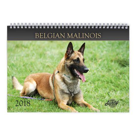 Calendar 2018 Belgium Belgian Malinois 2018 Calendar