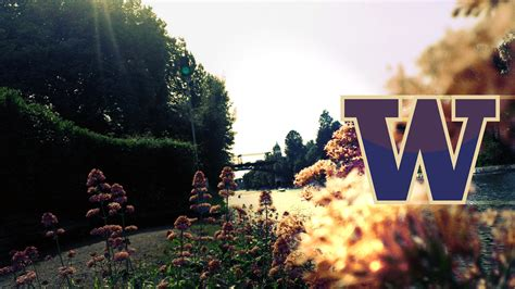 socratic definitions university of washington university of washington wallpaper wallpapersafari